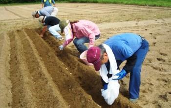 るぴなす観光農園-収穫の喜びを味わってみませんか-