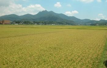 金峰山-頂上から一望する南薩一帯の景色は最高-