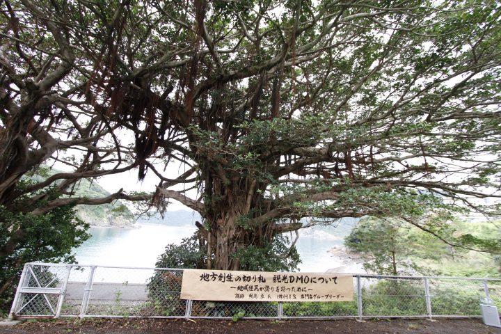 [開催報告]地方創生の切り札 観光DMOについて 10月24日