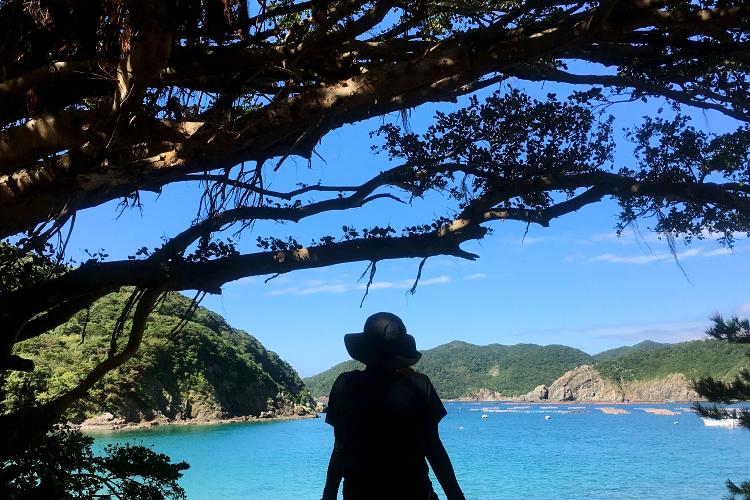 自然と景観