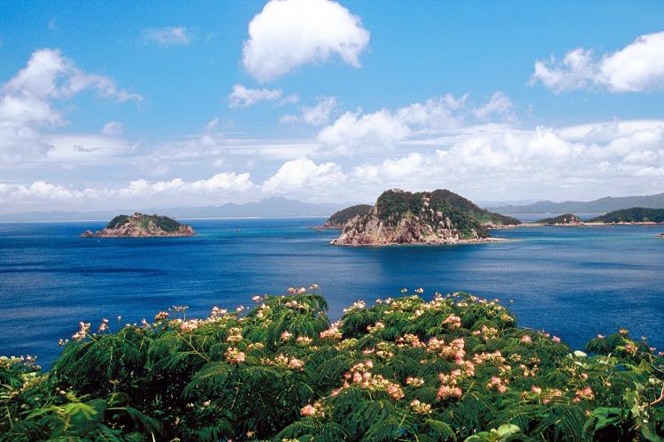 高崎山展望所から見る薩摩半島と崎ノ山一帯