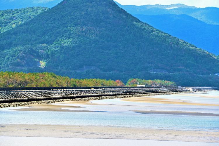 大浦の越路浜の干潟