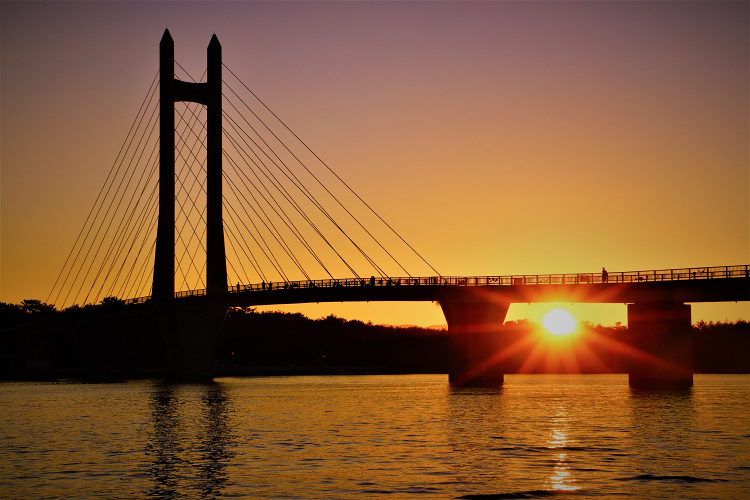 夕日とサンセットブリッジ