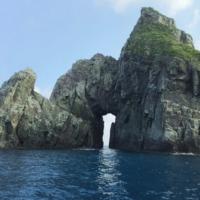 日本一の星空を見に行こう!宇治群島ツアー