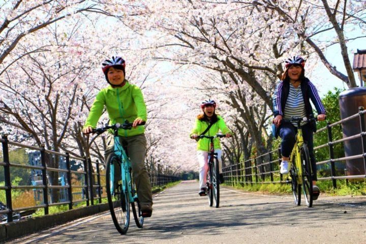 ★この春はサイクリング!キャンペーン★