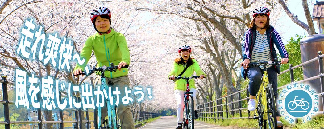 南さつま市で自転車を徹底的に楽しむ!