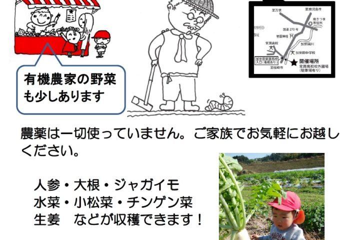 ありのまま分校の収穫体験!